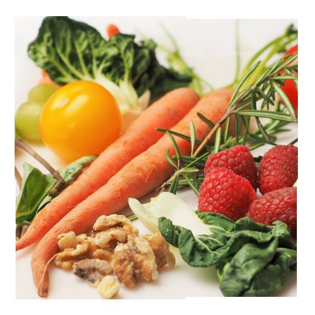 REEDUCACION-NUTRICIONAL-1.png