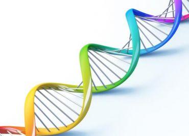 ¿Sabes qué es la Epigenética?